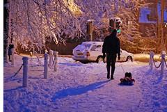 homeward bound ... ( Angel of light ) Tags: show uk family winter sunset snow colour ice silhouette angel night 50mm evening nikon 14 seasonal scene celebration lane sledge tweet abandonedcar twitter d80 familyuk light2009 angeloflight2009 whatgettywants familygetty2010 gettyimagesportraits gettyholidays2010