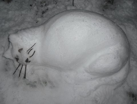 Snow Cat by Tim Dickins