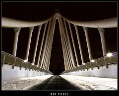 Balijbrug viaduct Zoetermeer (www.Royz.nl) Tags: bridge snow night nacht sneeuw viaduct zoetermeer brug a12 westergo nachtfoto voetgangersbrug balijbrug