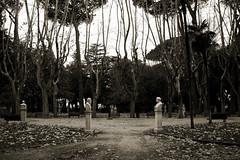 """""""a! te sei proprio guadagnato er mezzobbusto al Pincio!"""" (Valina*Snowflake) Tags: parco rome roma statua giardino pincio colle storici mezzobusto letterati quandoproprioseiarrivatoaltop mododidireromano"""