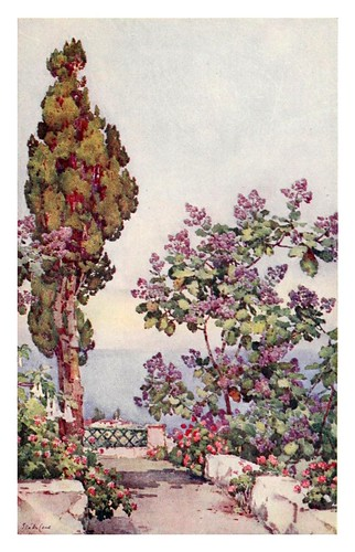 038-Un jardin en La Gomera-The Canary Islands (1911) -Ella Du Cane