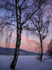 (c-h-l) Tags: schnee trees winter sky moon snow ice germany deutschland see mond scenery himmel wolken nrw eis landschaft bume ruhrgebiet 2009 frozenlake chl ruhrarea baldeneysee reupload cityhumanlife
