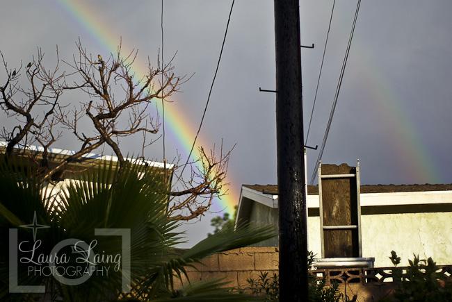 Rainbow002