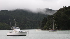 Doubtless Bay Fog
