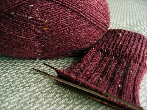 2010-01-24_lichen_rib_sock.jpg