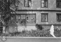 Lade gård (1962) (Trondheim byarkiv) Tags: norway norge 60s archive norwegen archives noruega trondheim sørtrøndelag 1962 noorwegen lade gård trøndelag arkiv trondhjem byarkiv ladegård trondheimkommune trondheimbyarkiv fotopositiv torh41b31 f2319