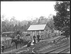 Slab house, Gully Line, Cardiff, NSW, [n.d] (Cultural Collections, University of Newcastle) Tags: house cardiff australia nsw residence lakemacquarie dwelling ralphsnowball snowballcollection ralphsnowballcollection asgn0883b39 gullyline newcastleregionnswhistorypictorialworks photographynewsouthwalesnewcastle