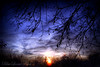 Face the Dark... (BlueLunarRose) Tags: blue light sunset shadow sky sun black tree clouds dark twilight vosplusbellesphotos bluelunarrose