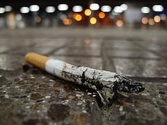 Threadbare (Stefano Sala) Tags: macro abandoned tile cigarette smoke butt forgotten stazione stub attesa fumo sigarette consumed sigaretta mozzicone abbandonata consumata