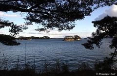 t90 vue sur la baie (Dominique Linel) Tags: matsushima miyagi tohoku japon