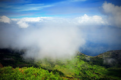 When the clouds comes down to dance upon the land (Sayid Budhi) Tags: fog clouds hill fresh awan freshness muara laketoba balige tourismdestination northsumatra danautoba sumaterautara northtapanuli tapanuliutara hutaginjang visitlaketoba2010 kunjunganwisata 1600asl tickfog kabuttebal greenhiil kabupatentapanuliutara perbatasantobasadantapanuliutara