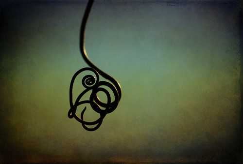 i ♥ tendrils