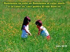 Luca 20-38 (Palosi Marton) Tags: kids childrens copii crestine versete biblice