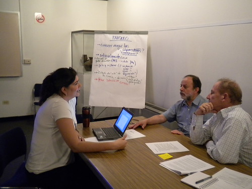 CPWF Impact Asessment specialist Sophe Alvarez helps project members develop their Outcome Logic Model