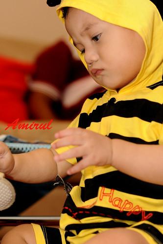 Amirul Bee 10