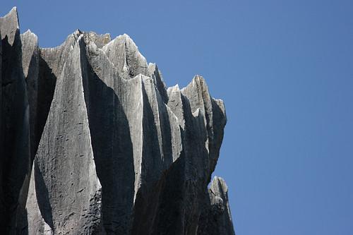 Петухи, и откуда пришел каменный лес