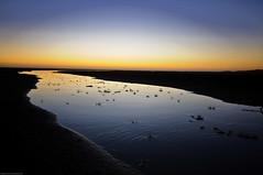 Waterway (-Nicole-) Tags: camera sunset newzealand reflection water evening smooth auckland nz winding lenses togetheralone karekarebeach sigma1020mmf4056 nikond90 gear