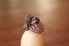 Anillo de Leopardita (laseoradelosanillos) Tags: anillos
