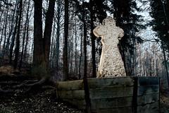 steinerne_jungfrau (joerg-esser.de) Tags: abend wald dunkel denkmal abendlicht schneeschmelze helbetal steinernejungfrau helbe einpraegsamde