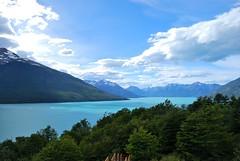 Lago Argentino desde las pasarelas (aferrari) Tags: patagonia santacruz argentina digital reflex nikon arboles bosque dslr polarizer lagoargentino hielo elcalafate tmpanos d60 glaciarperitomoreno polarizador parquenacionallosglaciares nikond60 canaldelostempanos