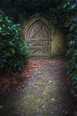 Doorway to the enchanted forest...