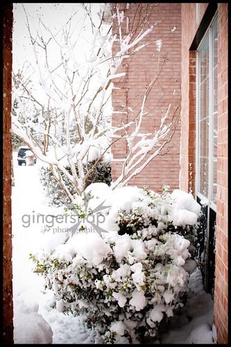 march snow4
