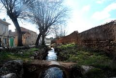 Piquera (Mariano Rupérez) Tags: naturaleza río puente árboles pueblo soria sanesteban piquera
