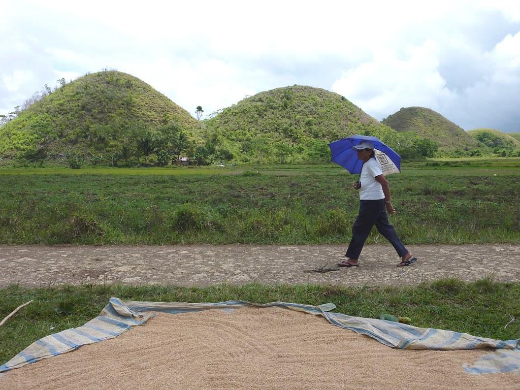 Bohol-Talibon-Chocolate Hills (40)
