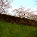 JAPAN_DAY4_124