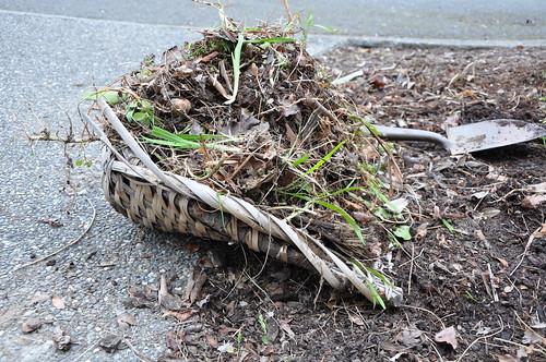 pile o' weeds
