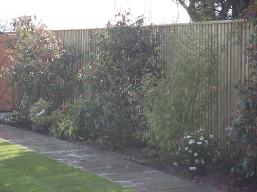 Macclesfield Fencing Image 9