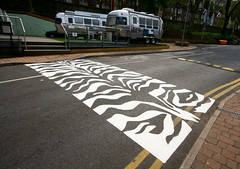Now That's a Zebra Crossing!! (Canis Major) Tags: bristol artwork stripes 500 zebracrossing arnosvale neorealism paintworks 5yearson