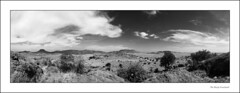 The Marfa Grasslands (AnEyeForTexas) Tags: sky blackandwhite bw panorama southwest nature landscape landscapes desert westtexas deserts grasslands marfa blancinegre chihuahuan chihuahuandesert stateoftexas chihuangrasslands