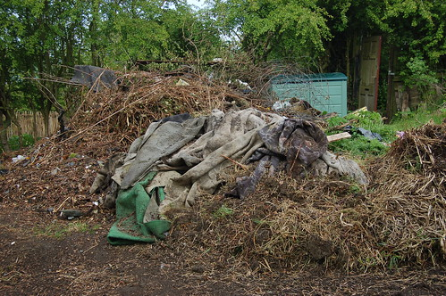 cleared allotment May 10 2