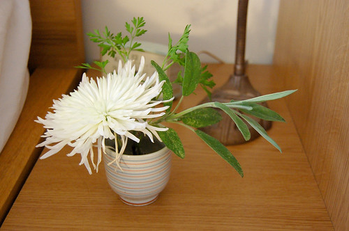 flower + herbs
