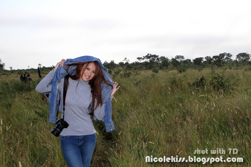 bush walking in kruger park