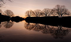 sunrise (Plutone (NL)) Tags: morning trees reflection tree water sunrise landscape leiden bomen colours natural boom singel silhouet ochtend landschap schemering zonsopkomst
