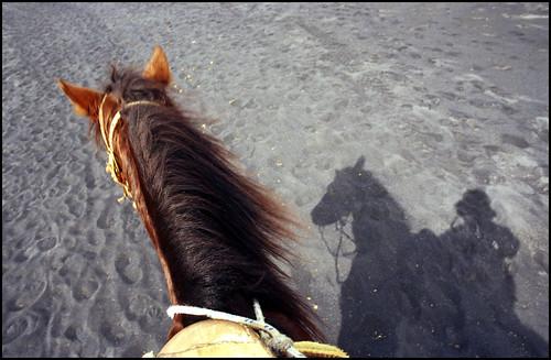 L'ombre d'un cavalier