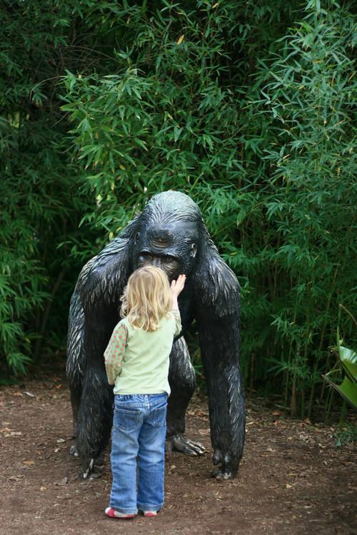 hello gorilla