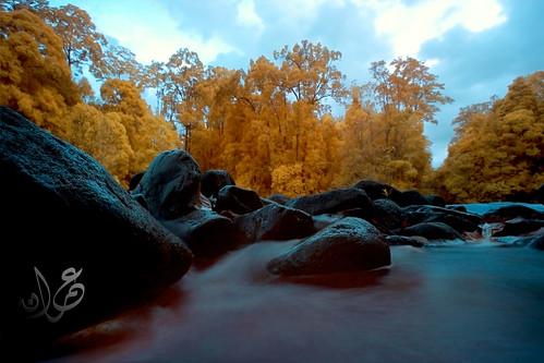 Sungai Jasin stream @ Kuala Marong, Endau-Rompin (IR)