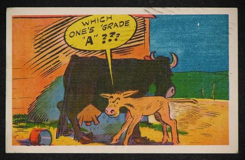 postcards - june 005