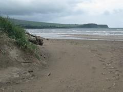 Ayr beach, dune
