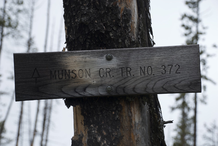 Trail 372, Munson Creek