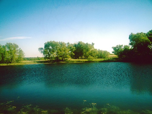 Park Hill Prairie Pond