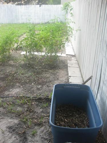 Compost 06