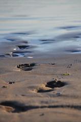 Lahinch June 17th 066 (garycollins2) Tags: ocean ireland west feet beach water foot coast clare waves footprints prints footsteps lahinch seps lehinch lahinchjune17th
