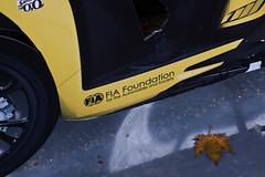 FIA Foundation - For the Automobile and Society