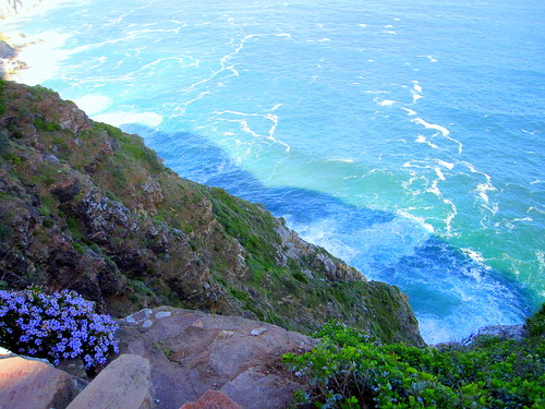 South Africa. Cape Peninsula, Atlantic coast