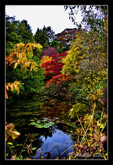 Autumn Pond (JKmedia) Tags: blue autumn trees red orange brown lake green nature water leaves yellow season countryside pond victoriapark bath colours colourful botanicalgardens canoneos40d 15challengeswinner fabcap jkmedia pregamewinner