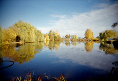autumn at the lake (black slim devil) (.sxf) Tags: autumn trees lake reflection fall film water clouds analog 35mm landscape see herbst wide wolken landschaft vivitar uws weitwinkel 22mm ultrawideslim vivitarultrawideslim blackslimdevil